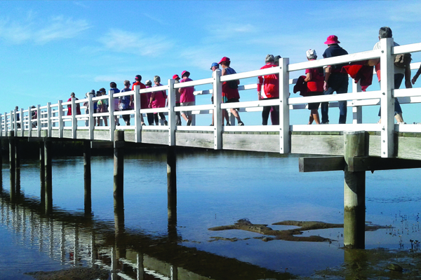 Group of people walking over a bridge for heart health